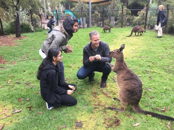 Two students meeting a wallaby at Healesville Sanctuary
