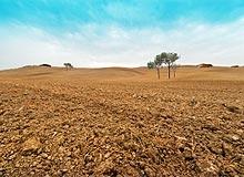Environmental Scientist Land Remediation