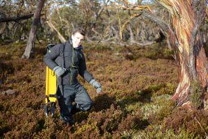 David Adams doing fieldwork in long grass, with bushland all around him