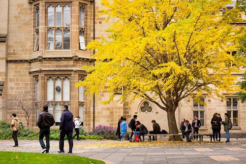Students milling about on campus