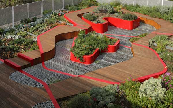 Green roof plantings at the Burnley Campus