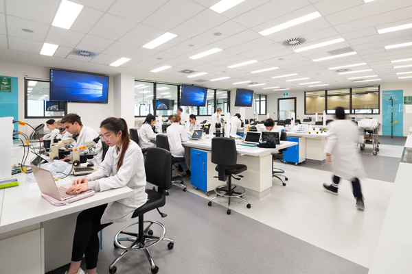 white laboratory with many students in lab coats working at desks