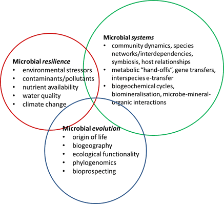 Venn diagram showing interactions between three factors: microbial resilience, microbial systems and microbial evolution.